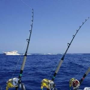 Catalina Island Fishing [Visit Catalina]