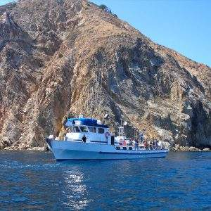 Catalina Island Fishing