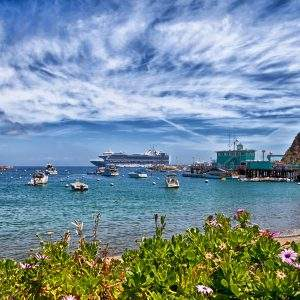 Catalina Island Cruises