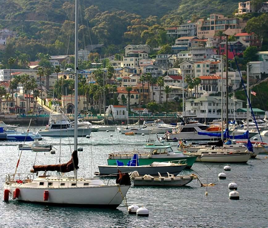 Avalon Harbor Boats