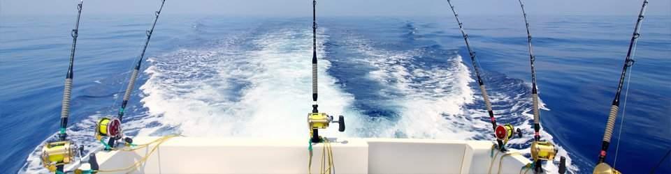 Catalina Island Fishing