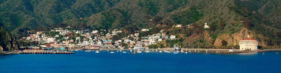 Catalina Island Eco Tours